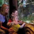 Arriva la Festa della Mamma: Gardaland SEA LIFE Aquarium ti aiuta a farle un regalo grande come il mare Se vuoi dire alla tua mamma che il bene che le […]